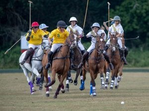 3 NFPC18 300x225 Thank you New Forest Polo Club!